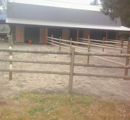 Paddocks for Horse Rehabilitation